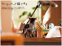 wallpaper_03_s.jpg